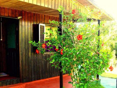 Alquilo Cabaña Frente Al Club De Sta Lucia Del Este