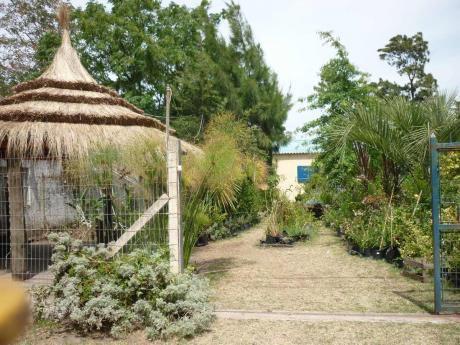 Las Hortensias, Para Dos  Finde $1600 Mas Consumo De Luz