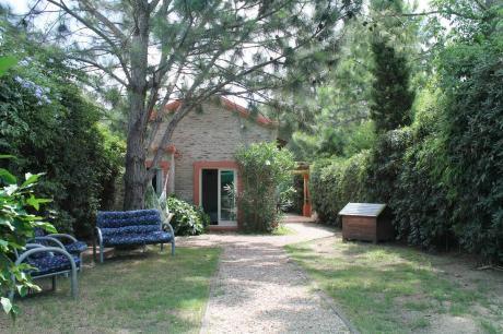 Casa En Alquiler  Punta Del Este, Pinares