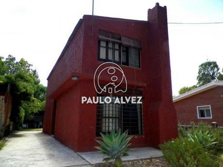 Gus Playa Grande (1131)