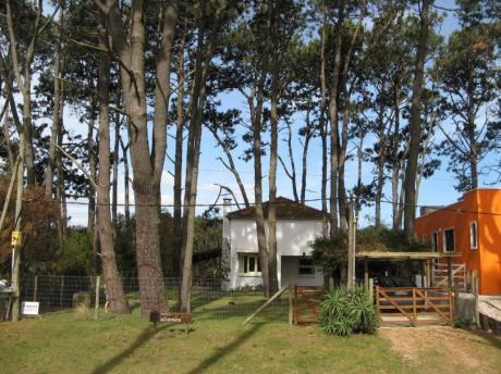 """Casa """"altamira"""" Parada 46 Mansa, Punta Ballena. A 80 Mts Del Mar."""