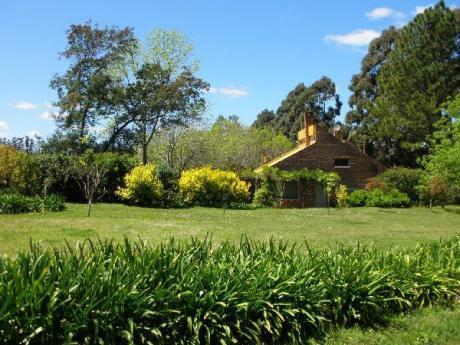 Casa En Punta Ballena - Ref: Pb1823