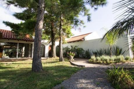 Casa Bosque - Mosaico