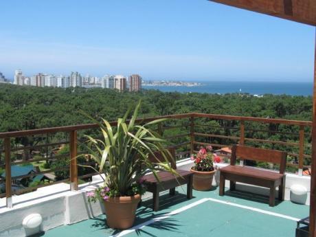 Apart Hotel Aptos. 2 Y 3 Ambientes Alquiler Temporario-club Sol Del Este