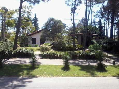 Sol Punta