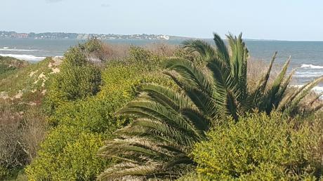La Playa A 100 Mts Punta Del Este Y Piriapolis A 15 Min