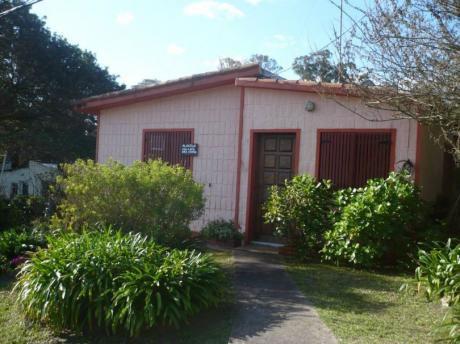 Alquilo Casa Y Apto En Piriápolis